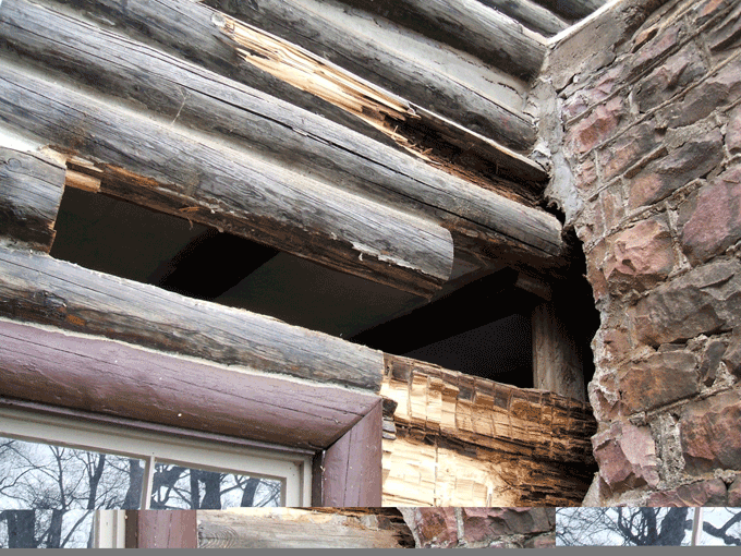 The level of rot varied greatly in this project. In this area, improper flashing between the logs and the chimney caused the rot. Some sections of the logs were so rotten that the entire log needed replacing. In other areas, the rot had not gone that deep into the log so a half-log was used.