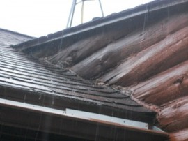 Wet logs on roof