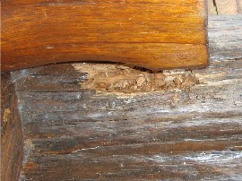 Log home dry rot and what can be done to resolve it