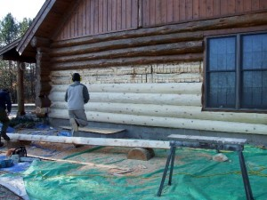 repairing rot in log home
