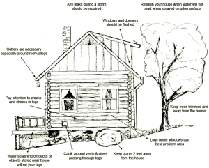 Typical Log Home Restoration Projects