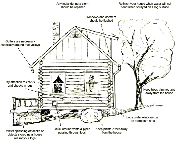 Diagram of what to look for when doing a log home maintenance checkup