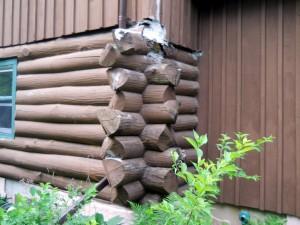 leaking gutters lead to rotten logs