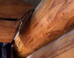 Log Home Problem Solvers to the Rescue