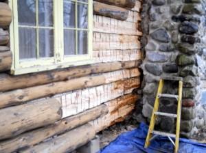 Rotten logs next to chimney