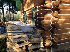 Wood pile up against logs