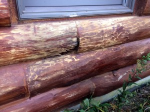 Log Home Problems – Log Rot Underneath Window