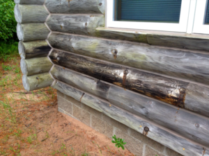 How to Spot Rotten Log Siding