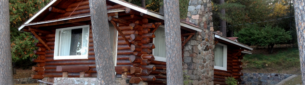 Professional Log Home Maintenance