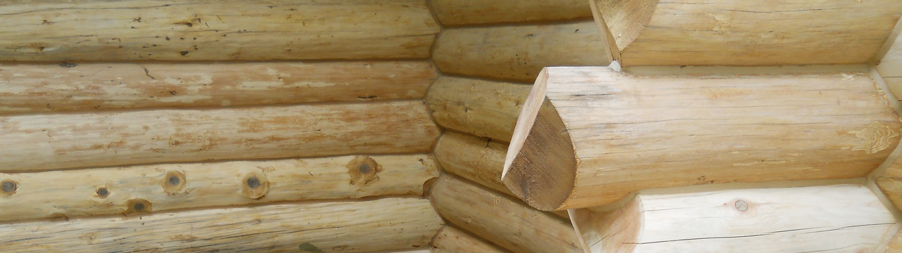 Borate Treatment- Keep your logs from rotting