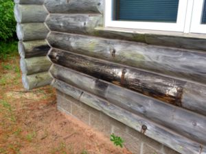 rotting log siding