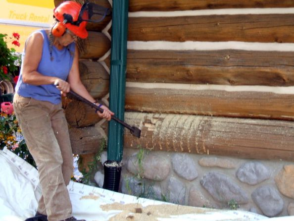 Carefully removing rotten log chunks