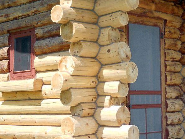 Full repaired log crowns