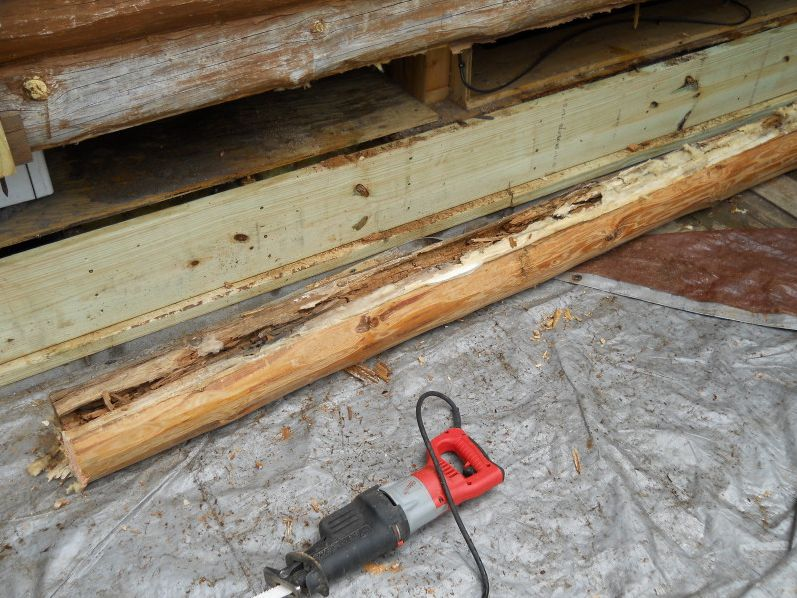 Replaced rim joist and sill plate