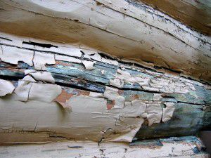 Paint covering up rot on logs